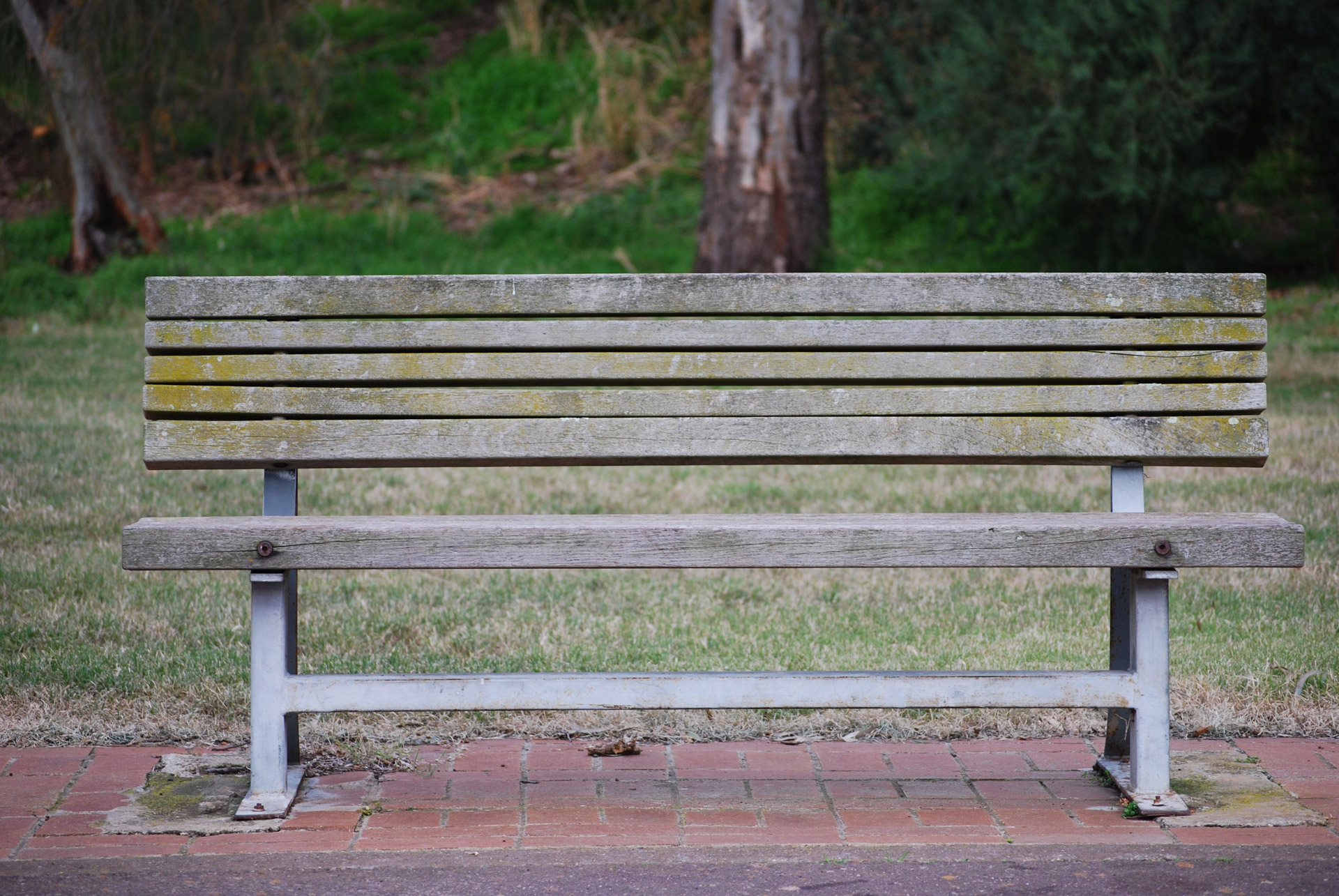 From the Park Bench to Buckhead! - King of Reads